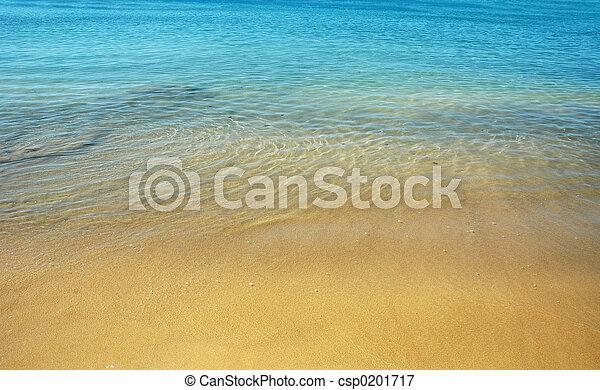 Playa de verano - csp0201717