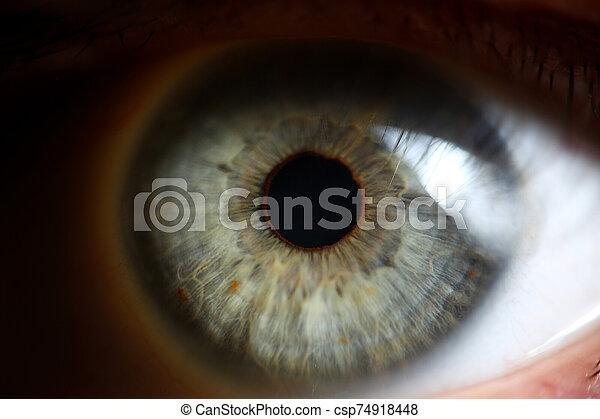 verde, humano, bajo, extremo, ojo, luz, técnica - csp74918448