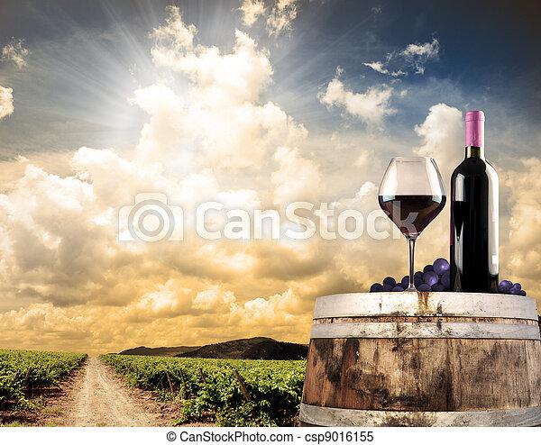 El vino sigue vivo contra el viñedo - csp9016155