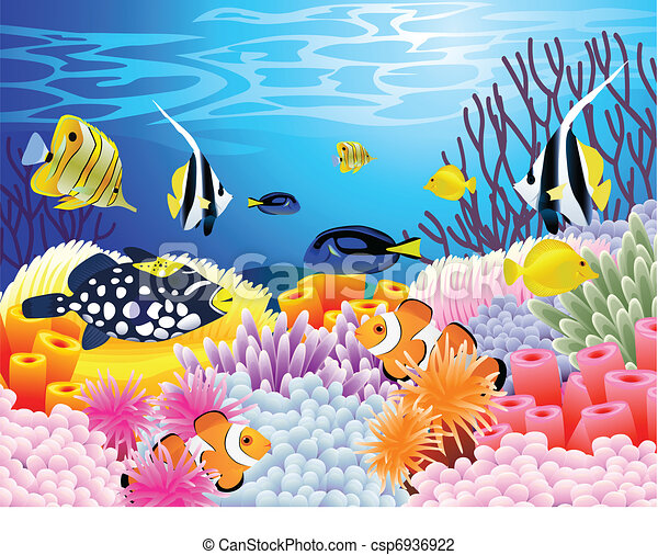 Un fondo de vida marina - csp6936922