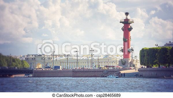 Columnas rosales en la saliva de la isla Vasilievsky fuera de la vieja bolsa de San Petersburgo, San Petersburgo - csp28465689