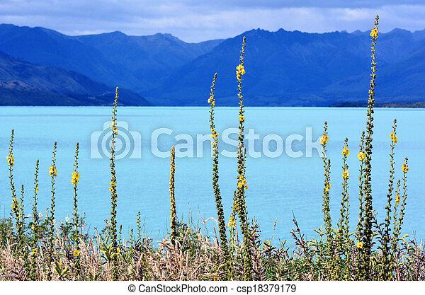 Lago wakatipu nueva zealand NZNZL - csp18379179
